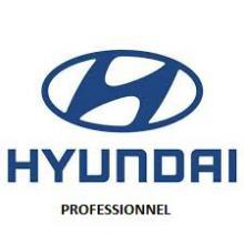 Certificato di conformità Hyundai